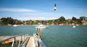 Herald Island West Auckland