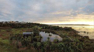 Te Atatu Peninsula