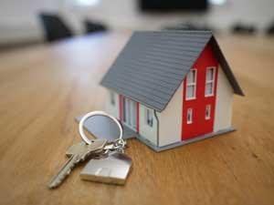 property rental management west auckland