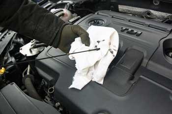 auto repair West Auckland