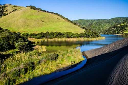 Lake Wainamu and Bethell Sand Dunes Auckland