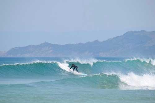 Muriwai Beach Surfing West Auckland